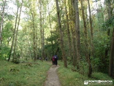 Hoces del Río Duratón - Sepúlveda;hiking free gratis senderismo viajes mayo senderismo